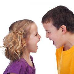 """SEMINARAS """"Vaikų emocinio intelekto ugdymas formuojant ugdymo erdves judrių žaidimų pagalba"""""""