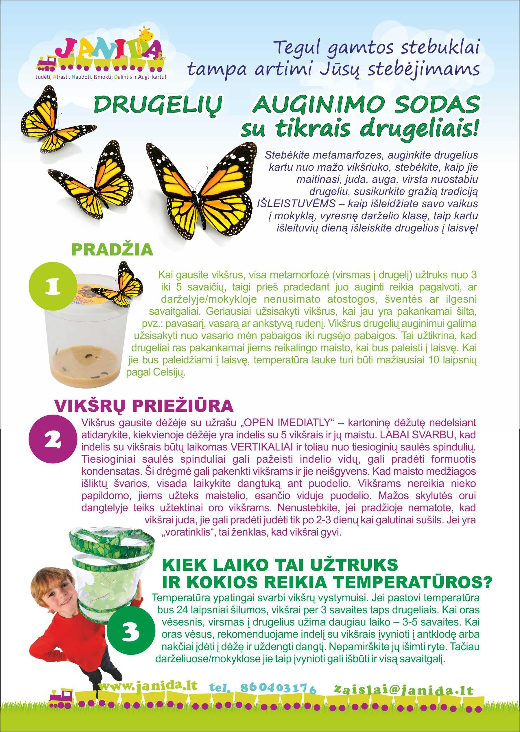 Didelis drugelių augininimo sodas, 8-10 sodas